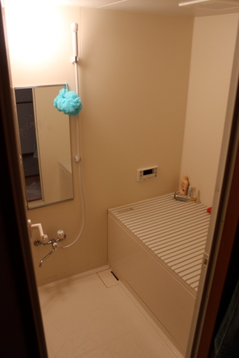 Our bathroom - complete with electronic tub.